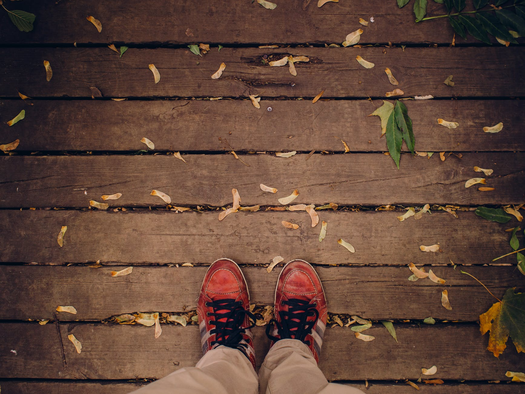 feet shoes autumn fall